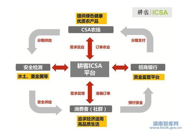 互联网 流程图 ppt素材